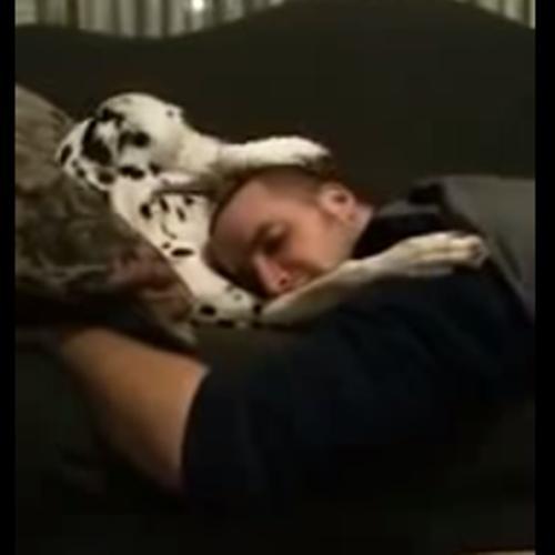 Cachorro fazendo carinho em seu dono para dormir