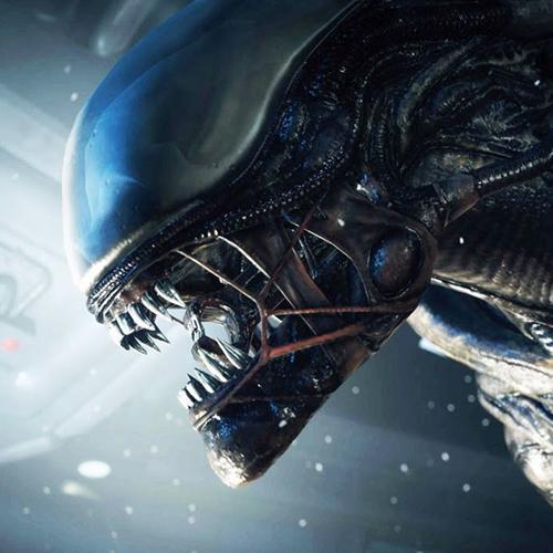 Alien 5 será dirigido pelo mesmo diretor de Distrito 9 e Chappie